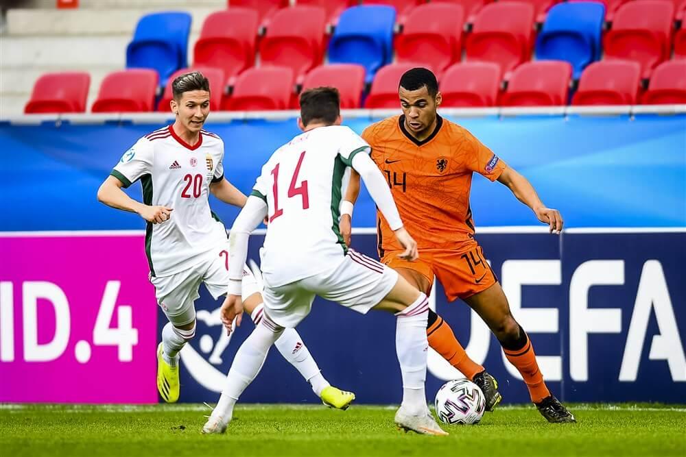 """Erwin van de Looi: """"Cody Gakpo gaat definitief niet met Jong Oranje naar het EK""""; image source: Pro Shots"""
